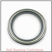 AMI BRRCSM202-10 Ball Bearing Cartridges